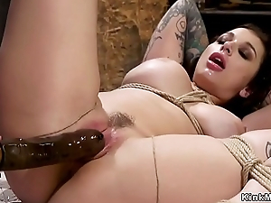 Busty lesbian slave gets strap on nigh the ass